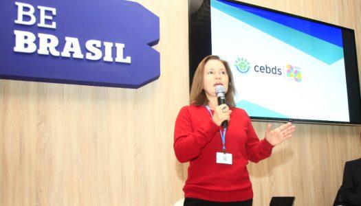 Vídeo: Marina Grossi faz balanço da COP23